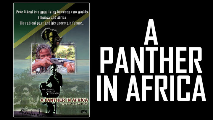 A Panther In Africa